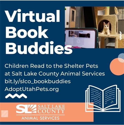 Virtual Book Buddies