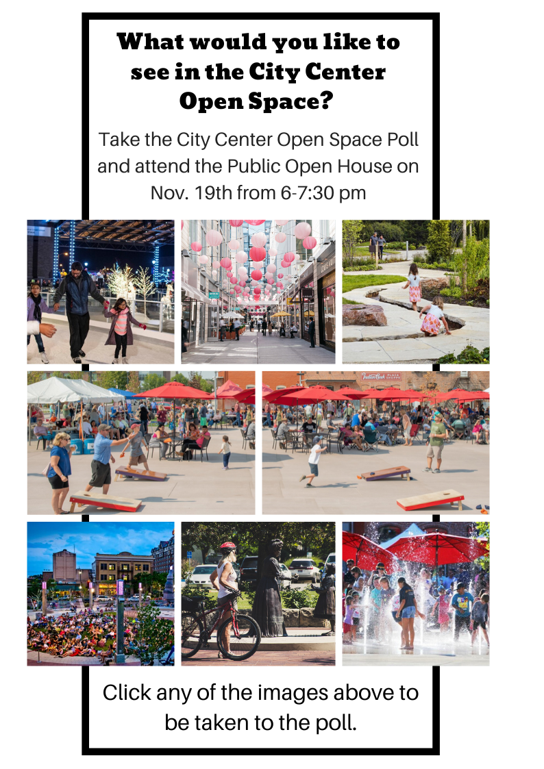 City Center Open Space Poll