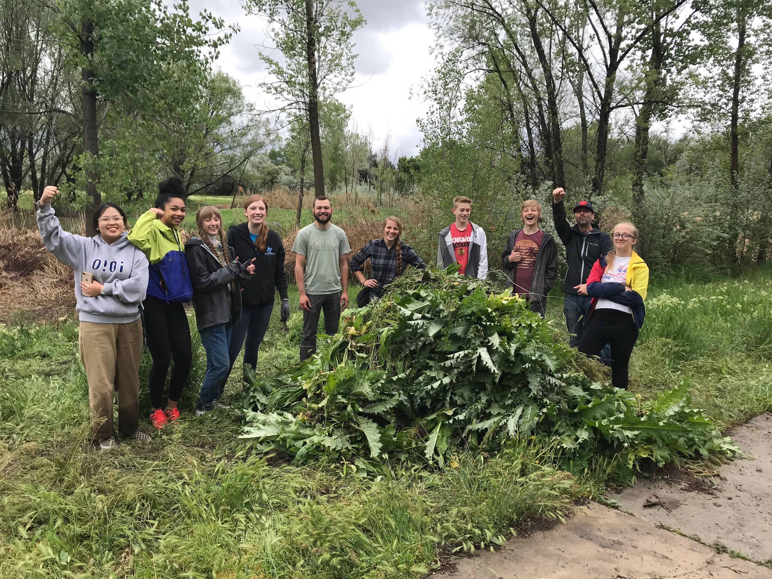 Cottonwood Cleanup